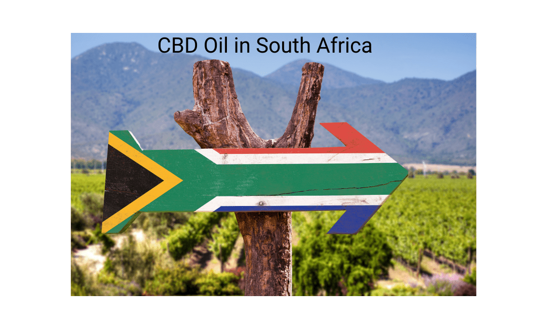 CBD OIL IN SOUTH AFRICA