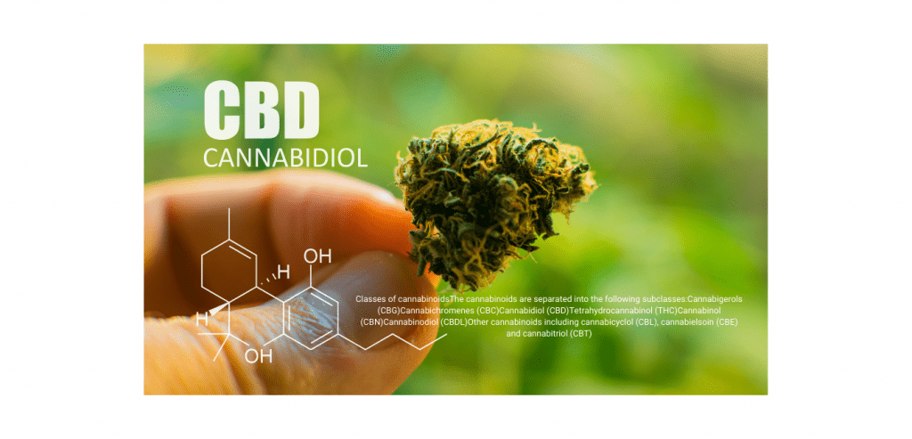 cbd oil south africa